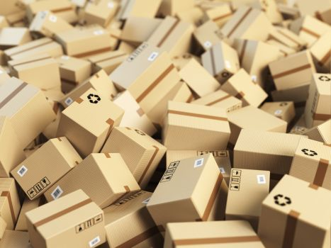 Maxx-Studio/Shutterstock.com